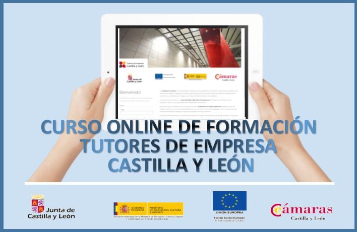 CURSO ONLINE DE FORMACION TUTORES DE EMPRESA CASTILLA Y LEON