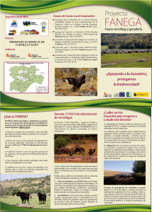 Hoja informativa proyecto FANEGA