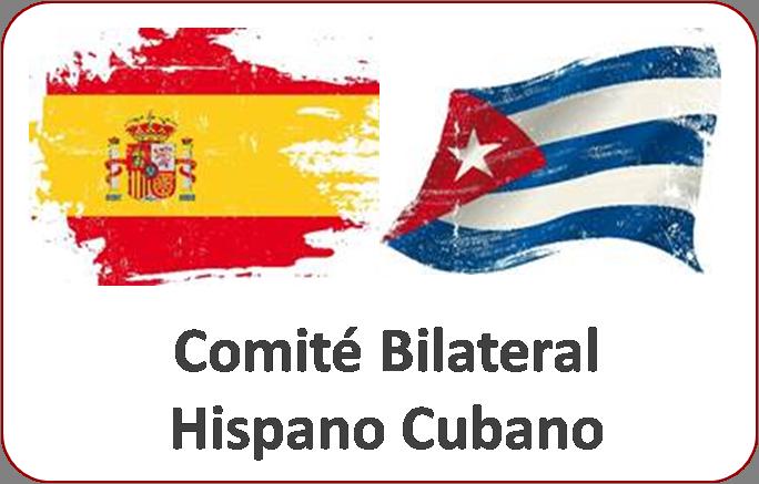 banner comite bilateral hispano cubano