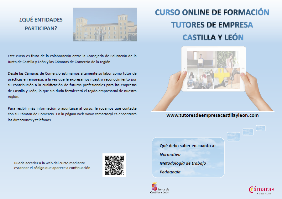 Curso on line tutores de empresa CyL