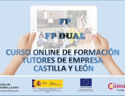 Curso on line: formación para tutores empresa FP y FP dual