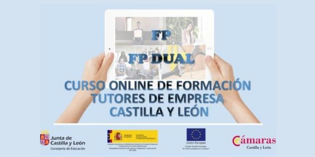 CURSO ON LINE TUTORES DE EMPRESA FP Y FP DUAL