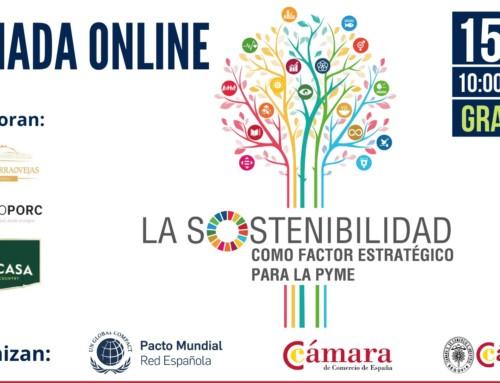 JORNADA ONLINE: LA SOSTENIBILIDAD COMO FACTOR ESTRATÉGICO PARA LA PYME