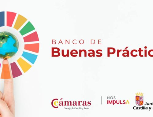 El Consejo de Cámaras lanza el banco de buenas prácticas ODS para impulsar el cumplimiento de los ejes de la Agenda 2030 en el tejido empresarial