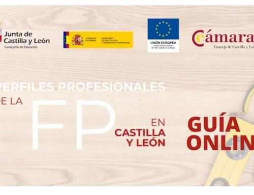 La Cámara de Segovia intermedia en la oferta de 14.844 plazas para alumnos de FP por parte de 3.918 empresas