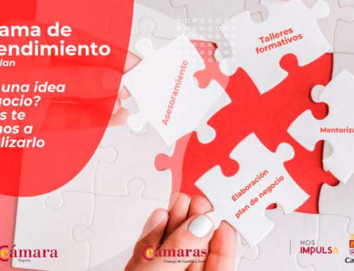 La Cámara de Comercio de Segovia y la Junta de Castilla y León potencian el emprendimiento con formación y asesoramiento personalizado