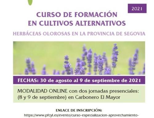 Cursos Gratuitos sobre cultivos alternativos (herbáceas olorosas y trufa) en la provincia se Segovia. Diputación de Segovia